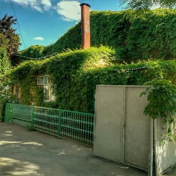 Зелёный домик. Краснодар Краснодарский Край, Краснодар, зелень, город, длиннопост