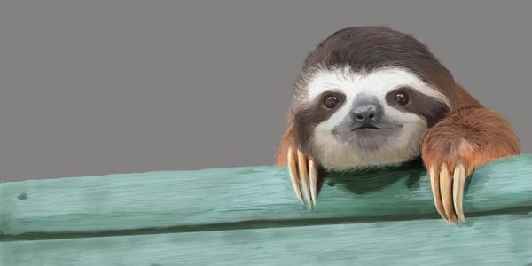 Ленивец рисунок, Photoshop, арт, ленивец