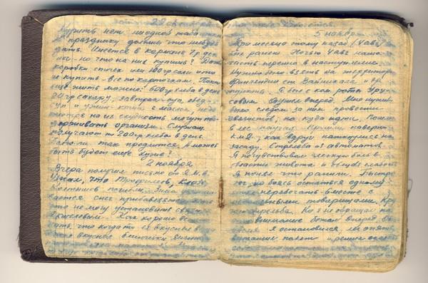 Скачать Дневник Торрент - фото 11