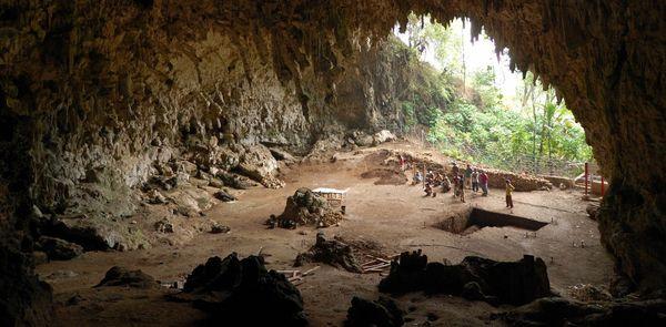 ДНК древних людей можно выделить из осадочных пород пещер древняя ДНК, древние люди, неандерталец, денисовец, Денисова пещера, осадочные породы, плейстоцен