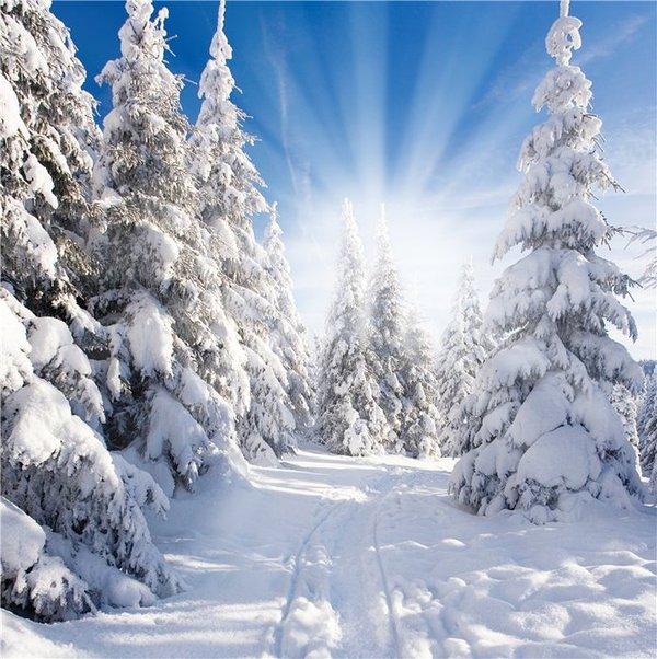 Пятый день фэнтези, зима, рассказ, длиннопост