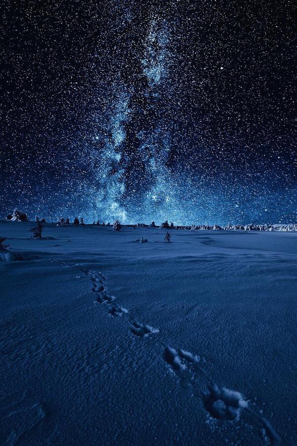 Звёзд на небосводе пост. №4. фотография, звездное небо, звездопад, ночь, Природа, длиннопост