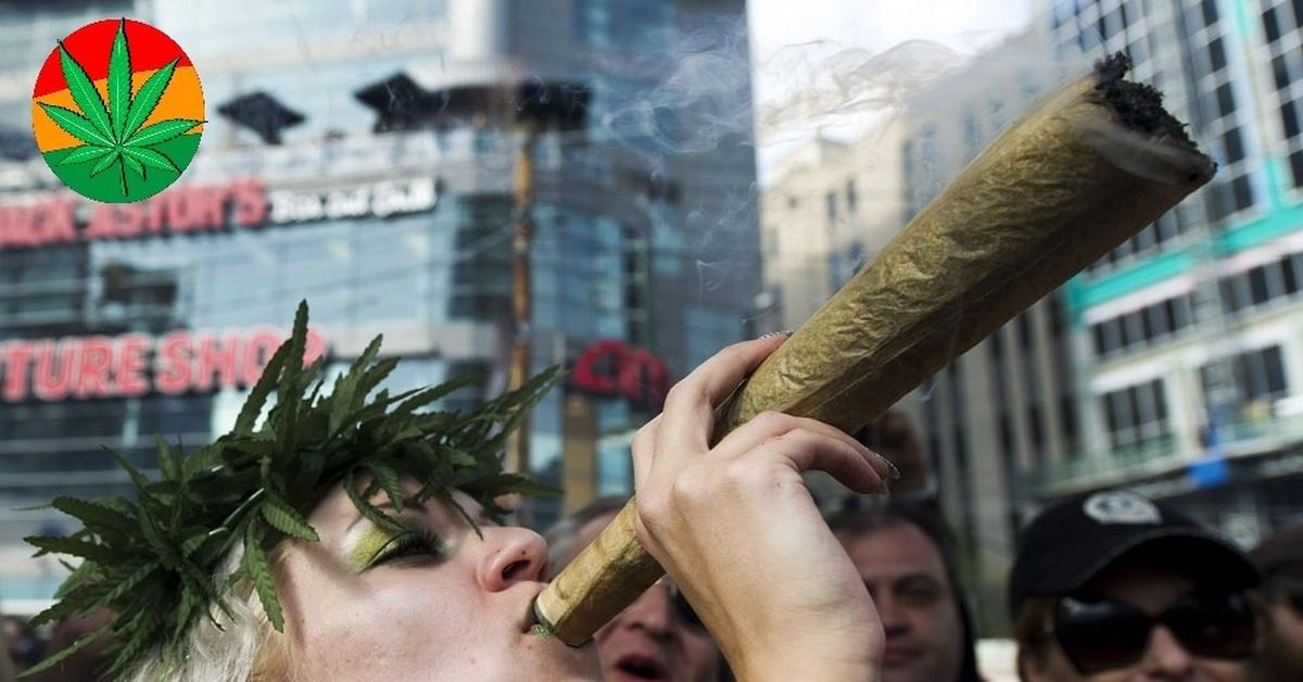 Приколы картинки марихуана