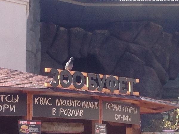 Сегодня был в Московском зоопарке