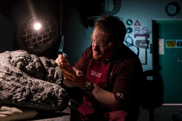 В Канаде показали хорошо сохранившегося динозавра Палеонтология, Динозавры, Находка, Копипаста, Длиннопост