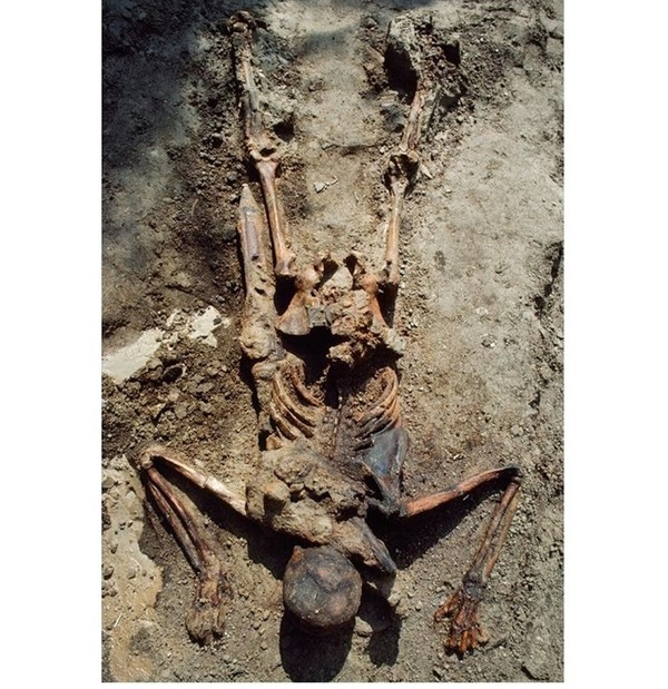 """Смерть легионера  - вопросы и ответы  (2 часть серии """"Жертвы извержения Везувия"""") история, извержение, Геркуланум, Везувий, древний рим, длиннопост"""