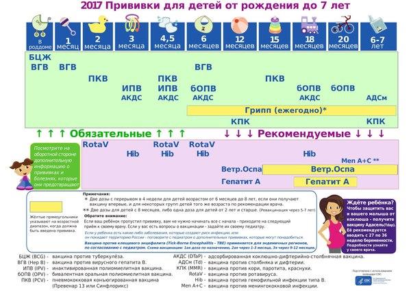 График прививок для детей Прививка, Календарь, Дети, Полезное, Грипп эпидемия прививки дети, Холивар