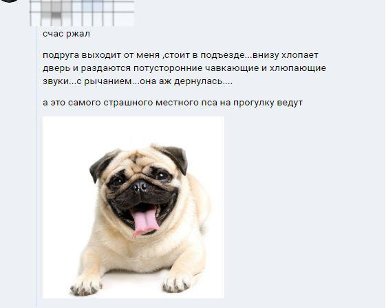 Звуки в подъезде)