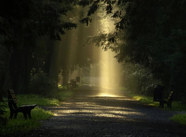 Сказочно! фотография, Природа, красота, свет