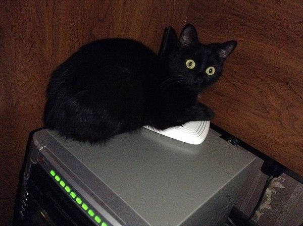 Почему же у меня тупит Wi-Fi..?
