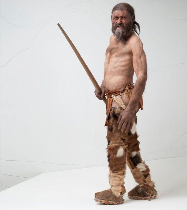 Кто и за что убил Эци 5300 лет тому назад? Археология, Наука, История, Криминалистика, Длиннопост