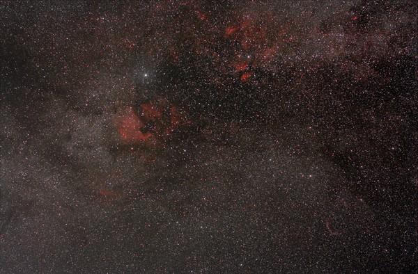 Туманности в созвездии Лебедь. астрофото, туманность, Небо, владивосток, дальний восток, Приморский край