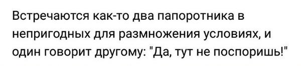 Споры ВКонтакте, неловкость, честно украдено, не мое