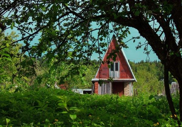 Садовый домик. дом, Природа, сад, садовый домик, трава, фотография, прогулка, пейзаж