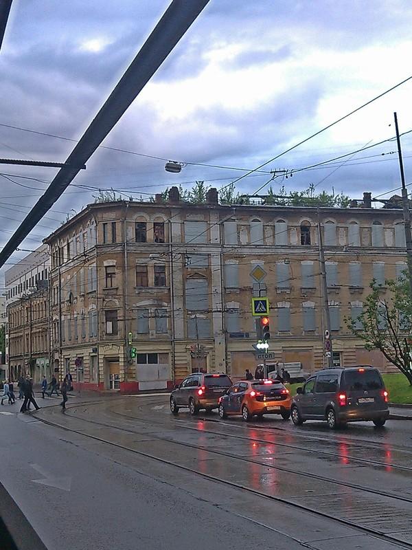 Экология Москвы Москва, Экология, Крыша, Год экологии, Инновации