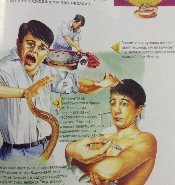 Демонстрация реакции на неподходящую сыворотку Упоротость, Твое лицо когда, Укус змеи