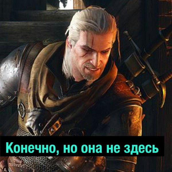 Дилемма Геральта The Witcher 3:Wild Hunt, Ведьмак, юмор, длиннопост