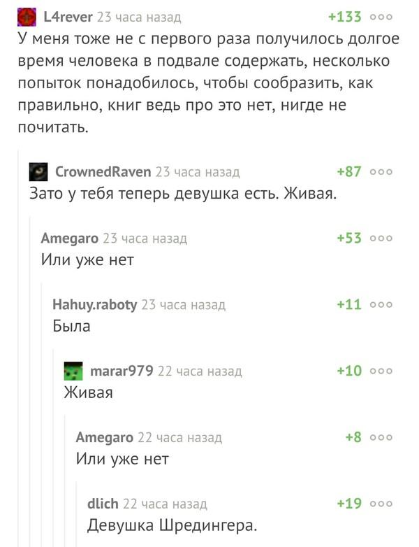 Подвальная девушка Шредингера. Скриншот, Комментарии, Узник, Девушки, Шредингер