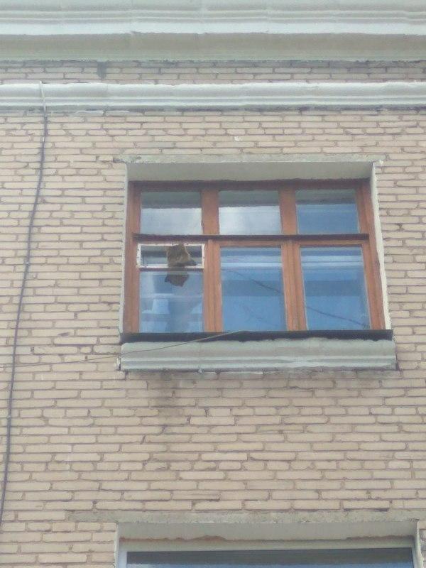 Недавно установили новую камеру видео наблюдения.