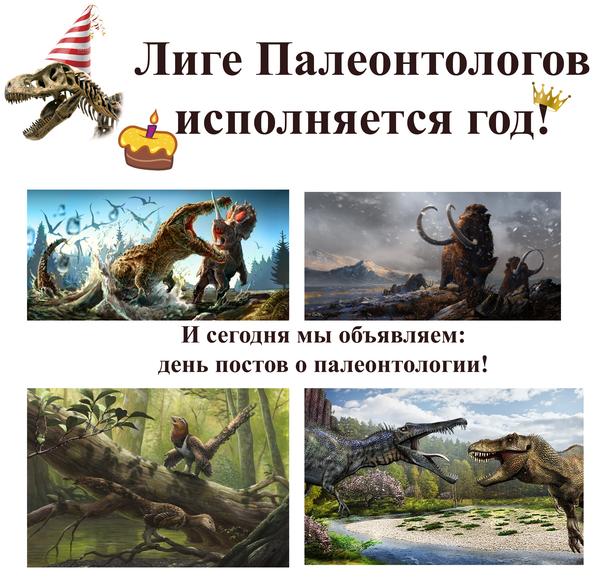 Как на самом деле выглядит труд палеонтологов v2 палеонтология, Интересное, музей, Археология, наука, прошлое, ископаемые, находка, длиннопост