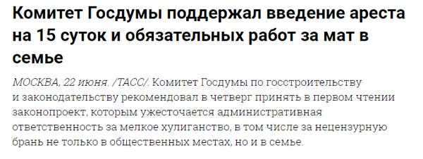 Арест на 15 суток за мат Мат, Новости, Госдума, ЗАконотворцы, Олигофрения, Депутаты, Грустное