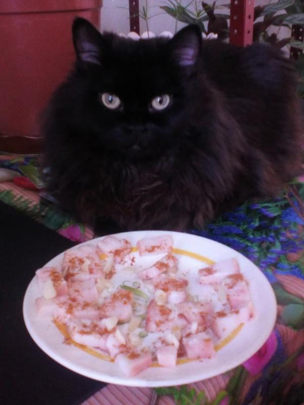 Сало с чесноком и перцем. Кот прилагается.