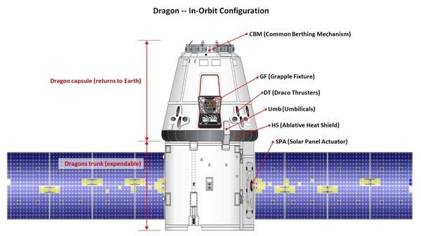 Грузовой корабль Dragon миссии CRS-11 вернулся на Землю космос, МКС, SpaceX, наука, ткс, длиннопост
