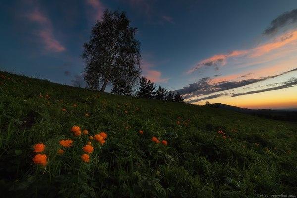 Алтайский край Белокуриха, Алтайский край, Россия, фотография, пейзаж, надо съездить, длиннопост