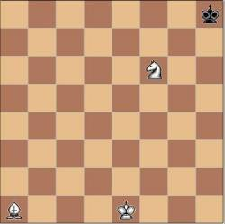 Мат в полхода задача-шутка, Ласкер, шахматы