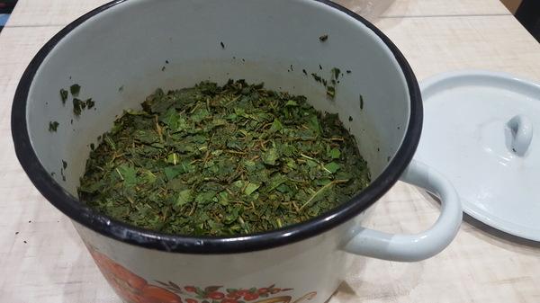 Делаем копорский чай Копорский чай, иван-чай, русский чай, кипрей, длиннопост