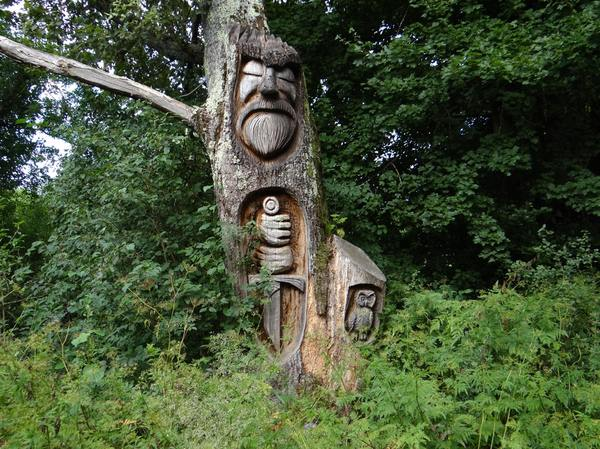 На страже леса