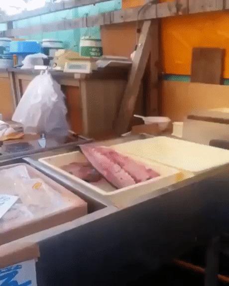 А рыбка свежая?