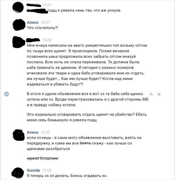 Убить щенков за 1000 рублей Щенки, Плохие люди, Привет читающим тэги, Скриншот