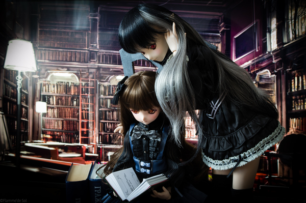 DollfieDream - библиотечное DollfieDream, фотография, Кукла, хобби, книги, аниме, длиннопост