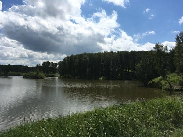 Чистомэн в Бердске чистомен, Бердск, Природа, пруд, зелень, мусор, как жить, как сказать так и сделать, длиннопост