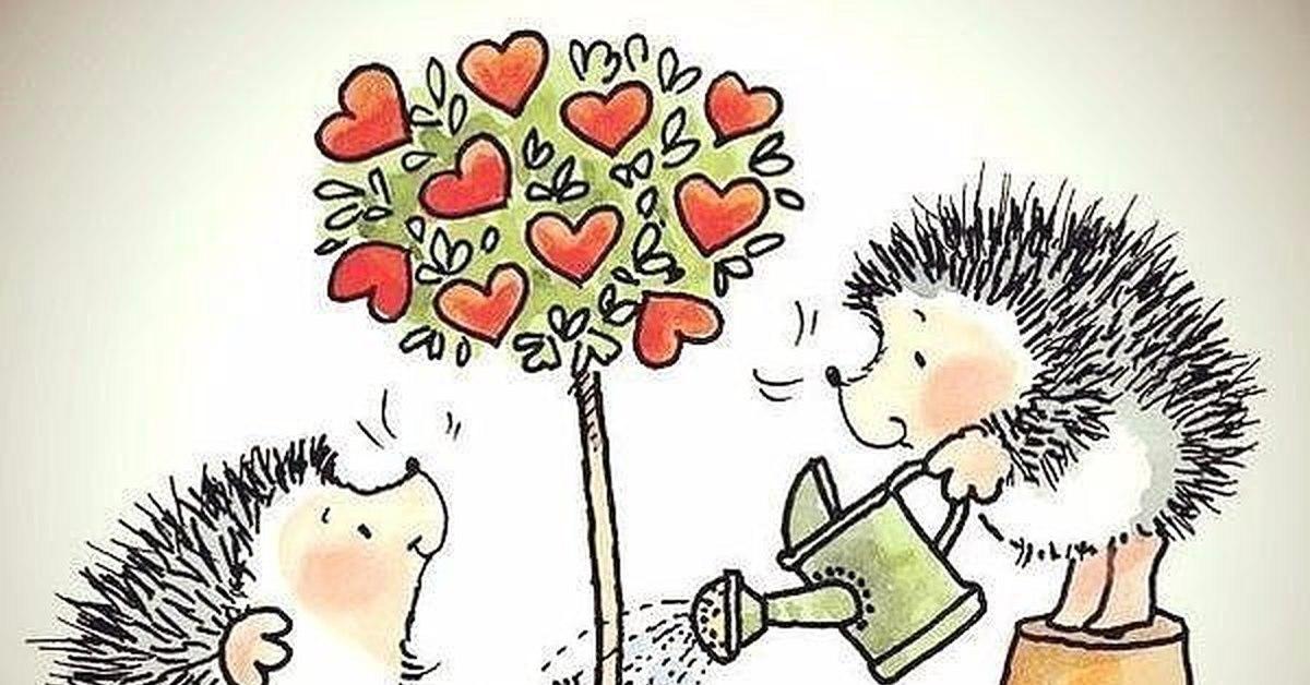 Картинки о любви прикольные с ежиками, доброе утро
