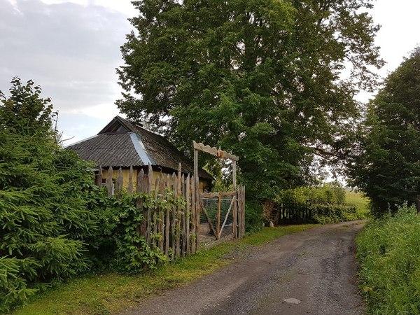 Измена в деревне рассказ фото 586-601