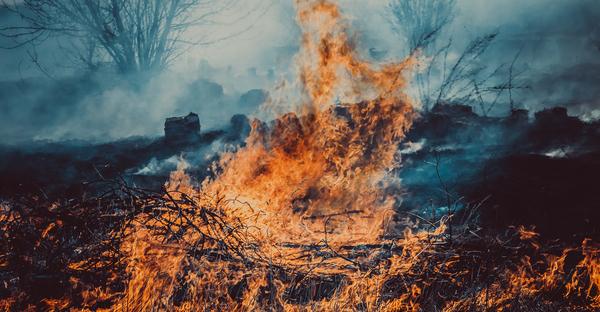 Сжечь, сжечь их всех! (с) Безумный Король Лига фотографов, огонь, длиннопост