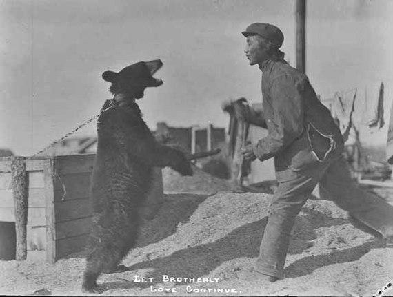 ЯПОНСКИЙ ПЕНСИОНЕР ОТБИЛСЯ ОТ МЕДВЕДЯ ПРИЁМАМИ КАРАТЭ Карате, Битва, Медведь