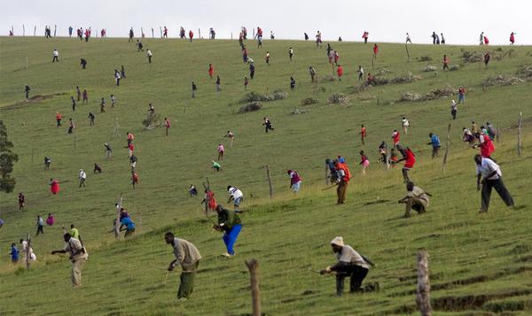 Открытие сезона охоты где-то в Африке )