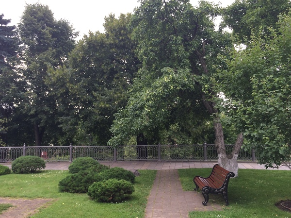 Был на днях в Кремле... кремль, урожай, яблоки, политика, кремлевский сад, длиннопост