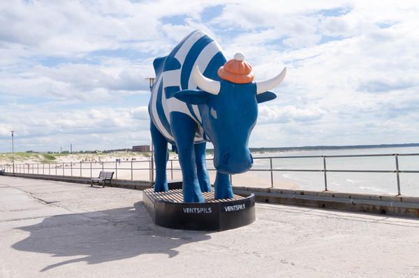 7 коров из Вентспилса Вентспилс, Латвия, Корова, Скульптура, Арт-Объект, Квест, Длиннопост
