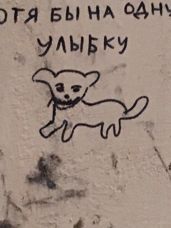 От улыбки станет всем светлей Граффити, Улыбка, Собака, Kill me please, Найду и убью тебя, Длиннопост