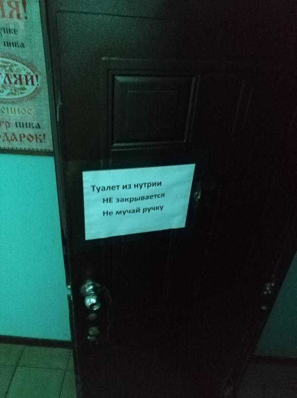 Туалет из нутрии Граммар-Наци, Кровь из глаз, Безграмотность