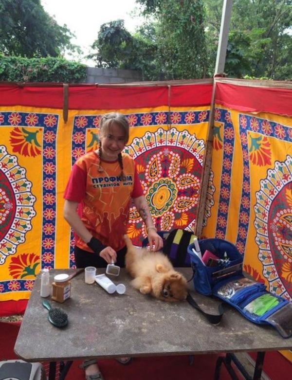 Работа хэндлером в Индии. Часть 1. индия, Хэндлер, грумер, путешествия, длиннопост, Собака, реальная история из жизни