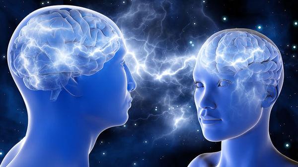 Женщины используют мозг активнее мужчин новости, мозг, женщина, Мужчина, наука