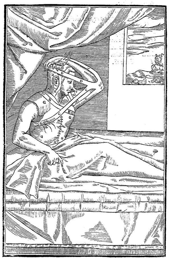 Худший секс-круиз в истории: как сифилис попал в Европу. длиннопост, история, сифилис, Европа
