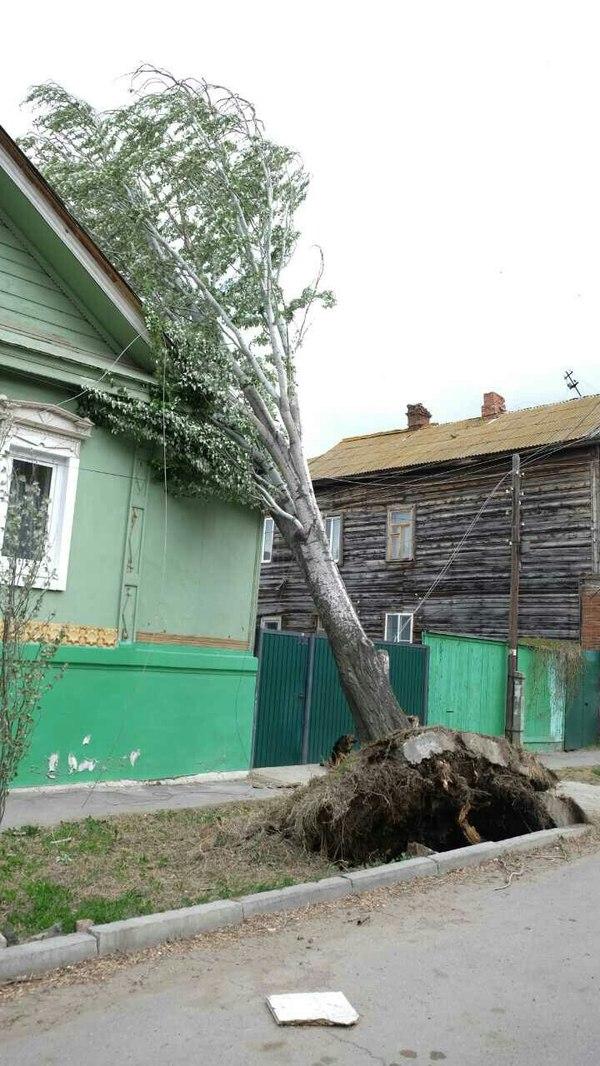 Об А(д)страханской осени Адстрахань, астрахань, погода, осень, длиннопост