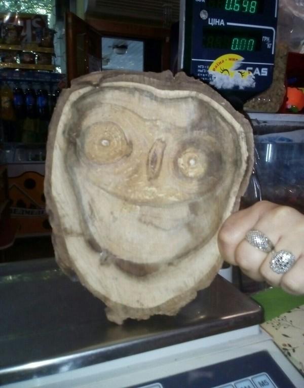 Все нормально бро. дерево, улыбка, лицо