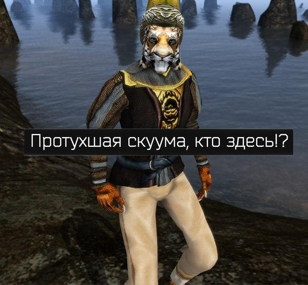 Коловианский меховой шлем не так прост Morrowind, The Elder Scrolls, Майк Лжец, старые игры и мемы, длиннопост